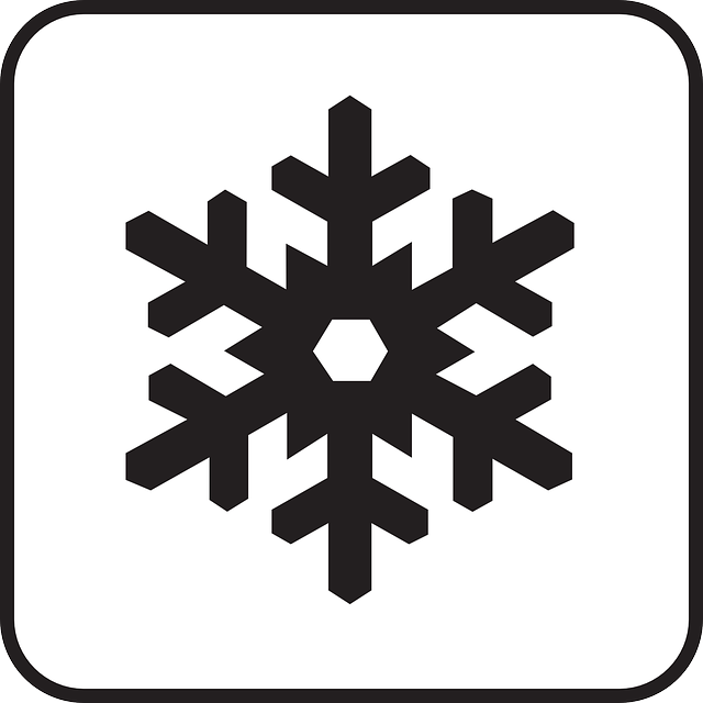 Surgelare e scongelare… sei davvero capace?